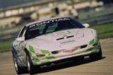 IMSA Endurance Championship Sebring