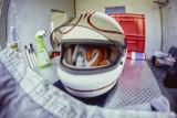 Alan Jones Helmet